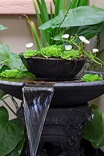 Ideas For Your Water Fountain Feature Gardecor