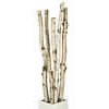 6 to 8 Tall Natural Birch Poles (2 to 3 Diameter)