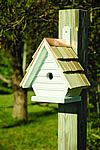 Chick Bird House - Whitewashed
