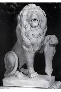 Lion #6 with Shield