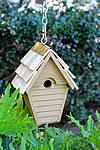 Wren-in-the-wind Bird House - Goldfinch