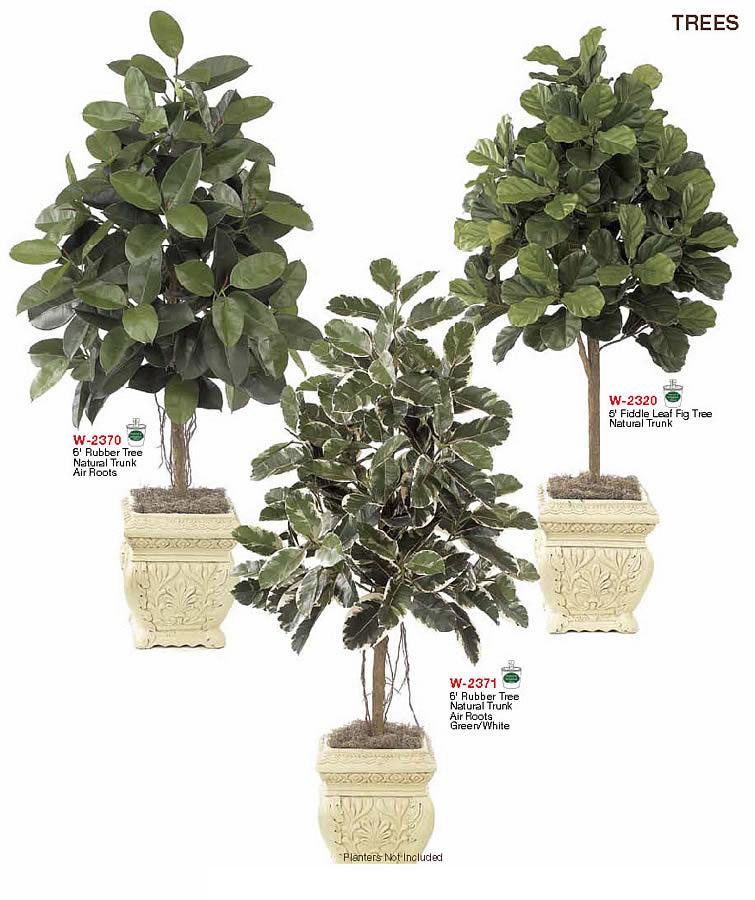Tall Broadleaf Trees Artificial Indoor Trees Amp Bushes