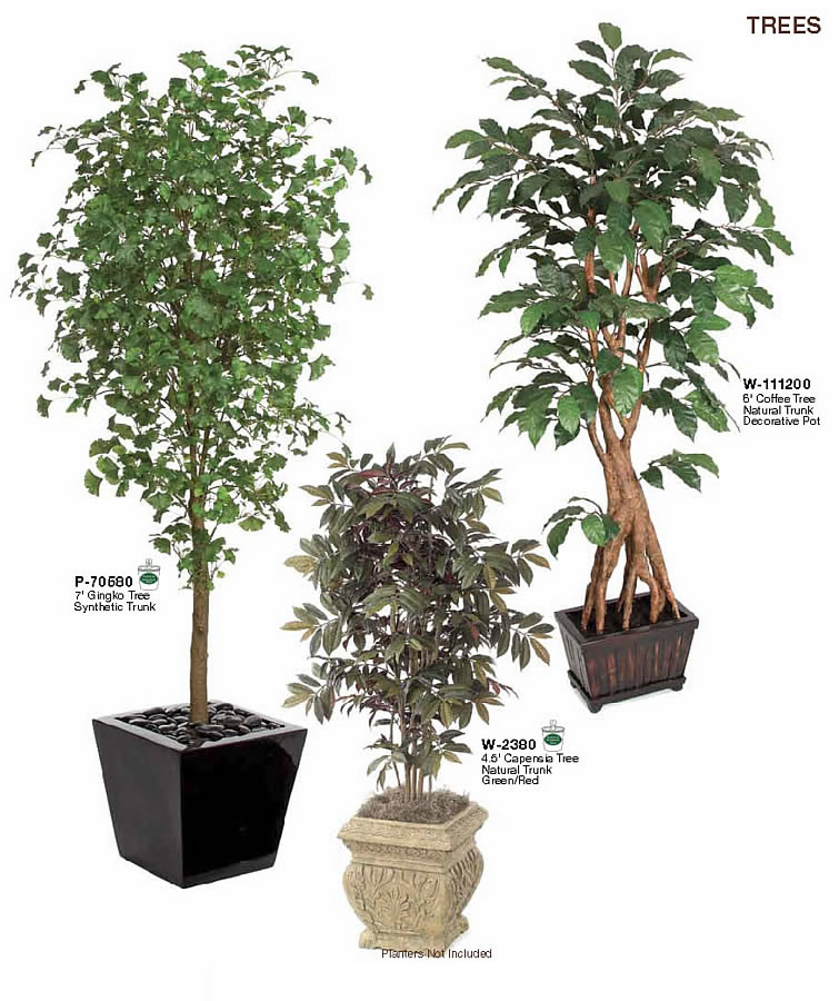 decorative indoor trees | My Web Value